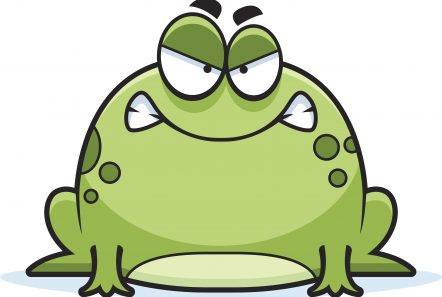 Angry Little Frog